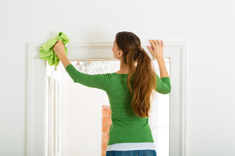 Young woman doing some spring cleaning